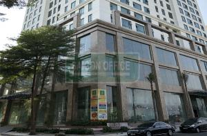 Golden King tower - Office, Officetel, Retails for lease in District 7 HCMC